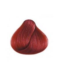 Kaycolor Dark Intense Red Blond  6.66  100ml