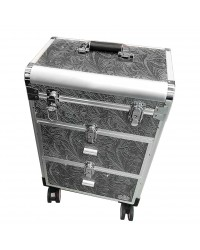 Case on wheels Silver
